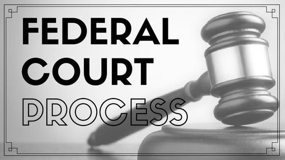 FEDERAL CRIMINAL CHARGES COURT PROCESS