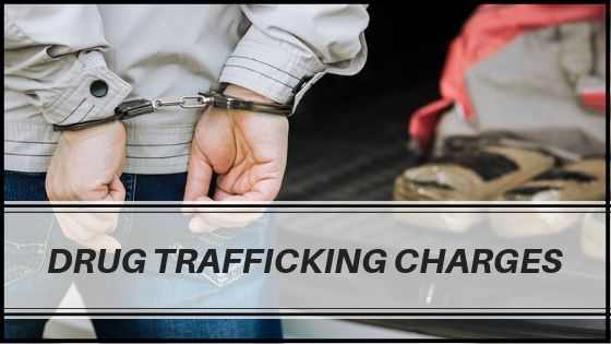 Drug Trafficking Charges Michigan
